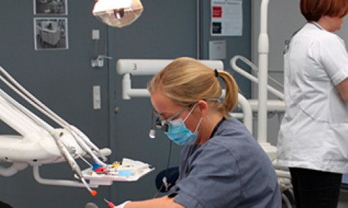 Teamet omkring tandlæge Stine